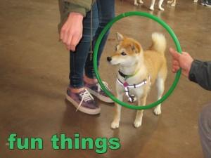 funthings